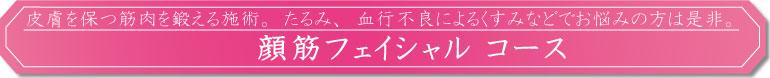 """顔筋フェイシャル コース"""" width="""