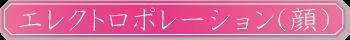 エレクトロポレーション(顔)
